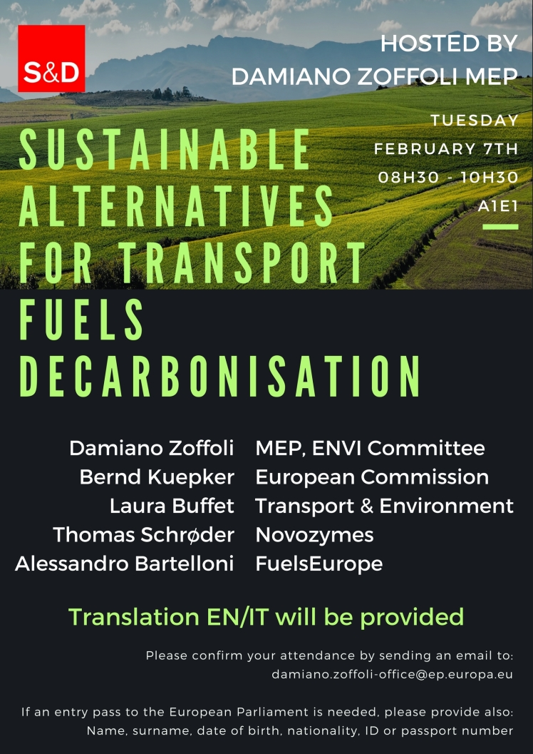 Sustainable alternatives for transport fuels decarbonisation.jpg