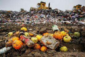 foodlandfill640