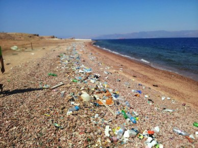 Plastic-Beach-1024x768