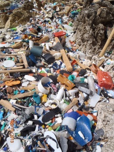 Marine debris beach