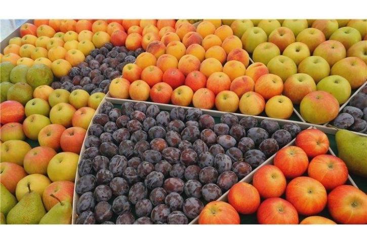 NATURA-NUOVA-prodotti-frutta-biologica